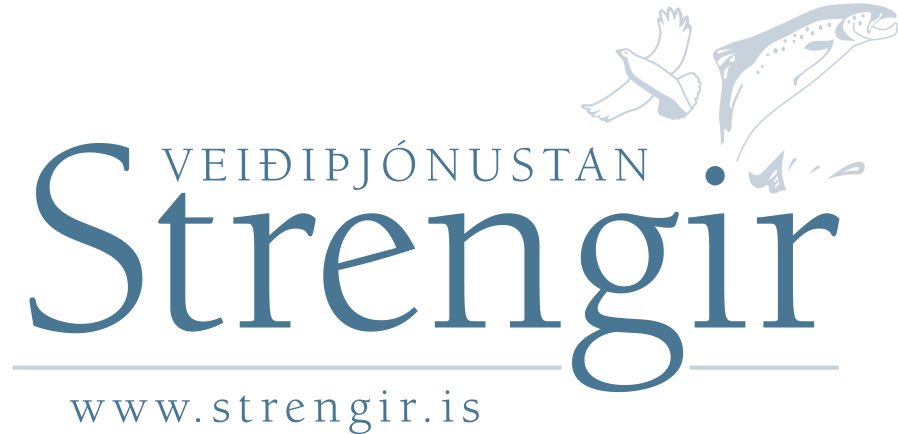 strengir_logo.png